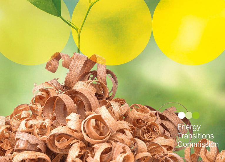 biomass ETC