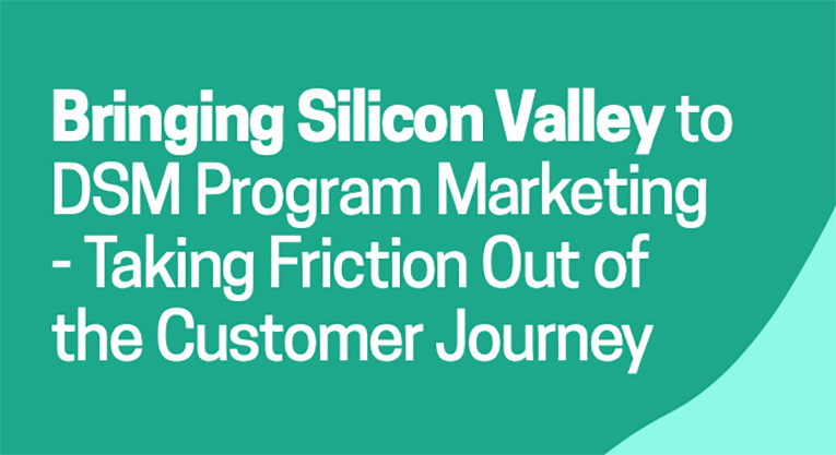 Bringing-Silicon-Valley-to-DSM-Program-Marketing-.jpg